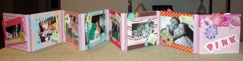 mini album sanfonado pink by bia