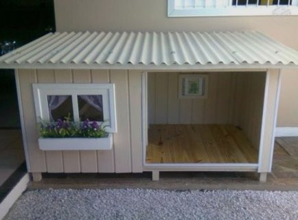 outdoor space ideas for mini pigs