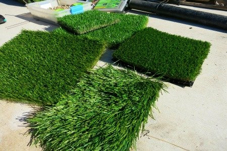 putting in a fake lawn