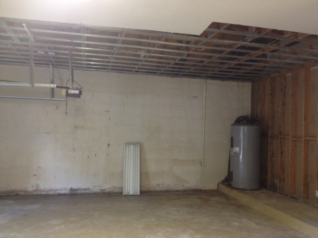 mold removal in garage
